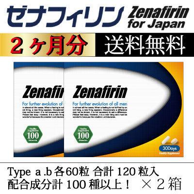 ゼナフィリン5.jpg